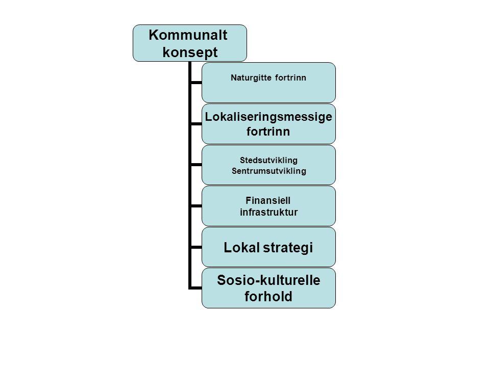 Kommunalt konsept Naturgitte fortrinn Lokaliseringsmessige fortrinn Stedsutvikling Sentrumsutvikling Finansiell infrastruktur Lokal strategi Sosio-kulturelle forhold