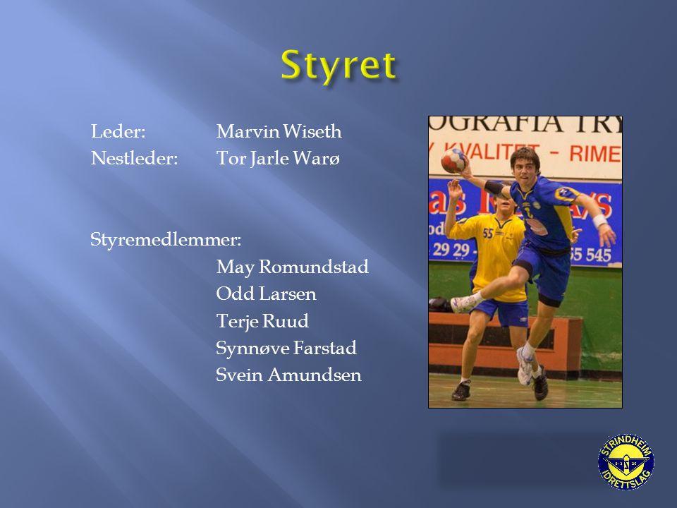 Leder: Marvin Wiseth Nestleder: Tor Jarle Warø Styremedlemmer: May Romundstad Odd Larsen Terje Ruud Synnøve Farstad Svein Amundsen