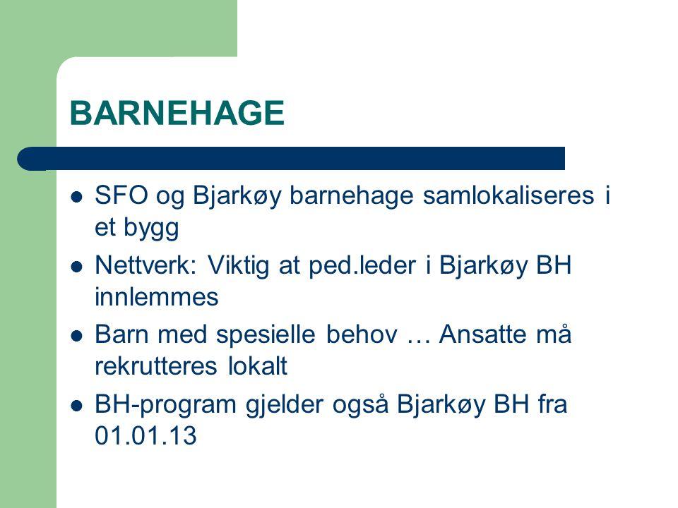 BARNEHAGE SFO og Bjarkøy barnehage samlokaliseres i et bygg Nettverk: Viktig at ped.leder i Bjarkøy BH innlemmes Barn med spesielle behov … Ansatte må