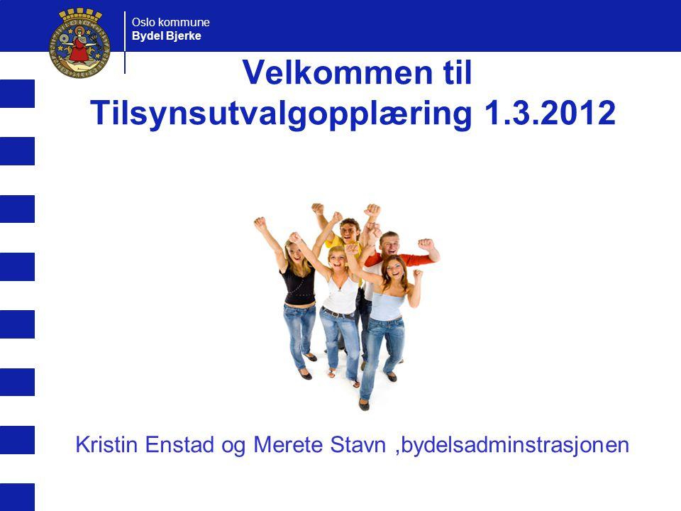 Oslo kommune Bydel Bjerke Velkommen til Tilsynsutvalgopplæring 1.3.2012 Kristin Enstad og Merete Stavn,bydelsadminstrasjonen