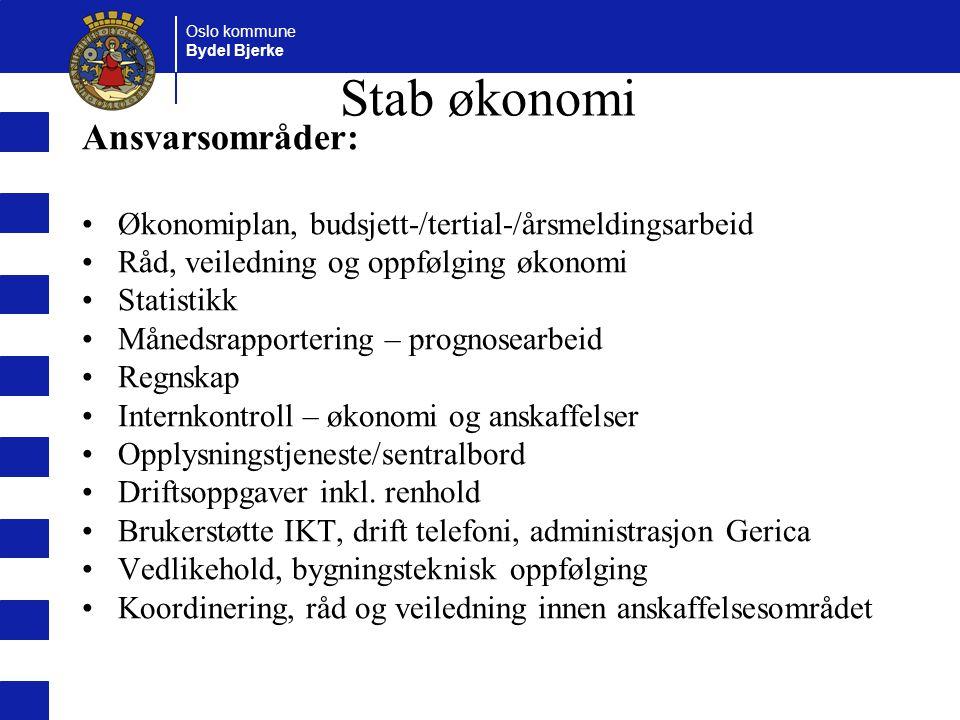 Oslo kommune Bydel Bjerke Stab økonomi Ansvarsområder: Økonomiplan, budsjett-/tertial-/årsmeldingsarbeid Råd, veiledning og oppfølging økonomi Statist