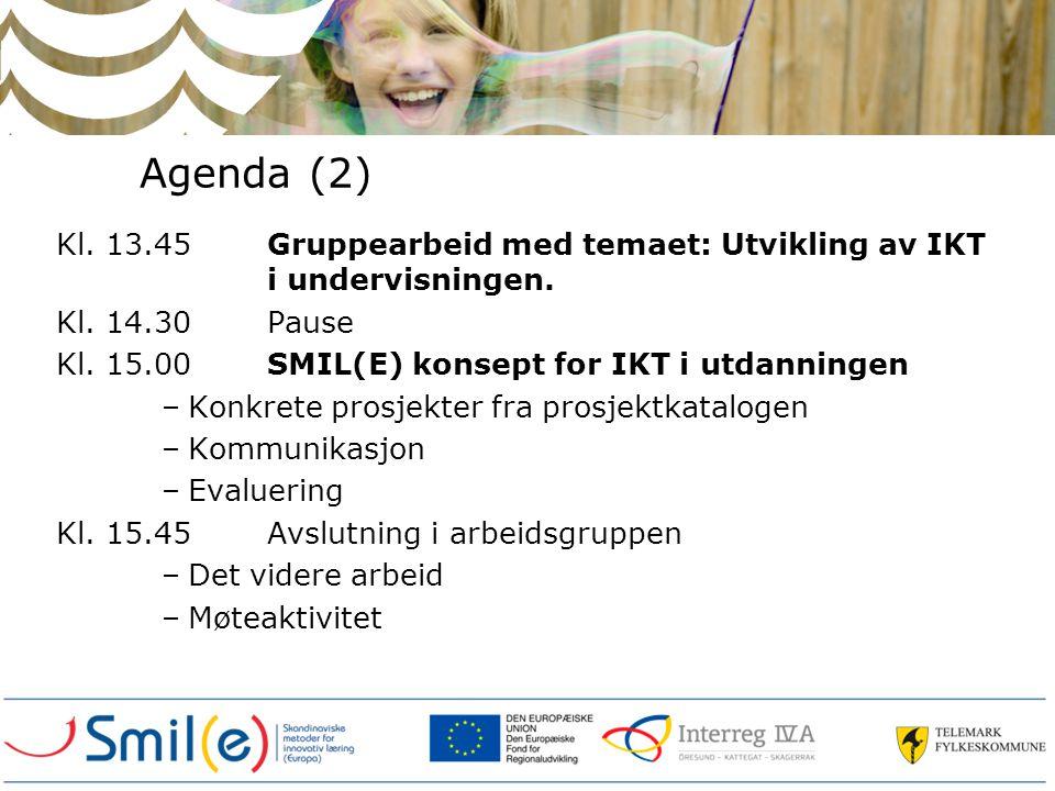 Evaluering Hvordan vurderer vi best (SMART) SMIL(E) forløpet og spesielt kvaliteten av de enkelte prosjekter Koordinert evaluering.