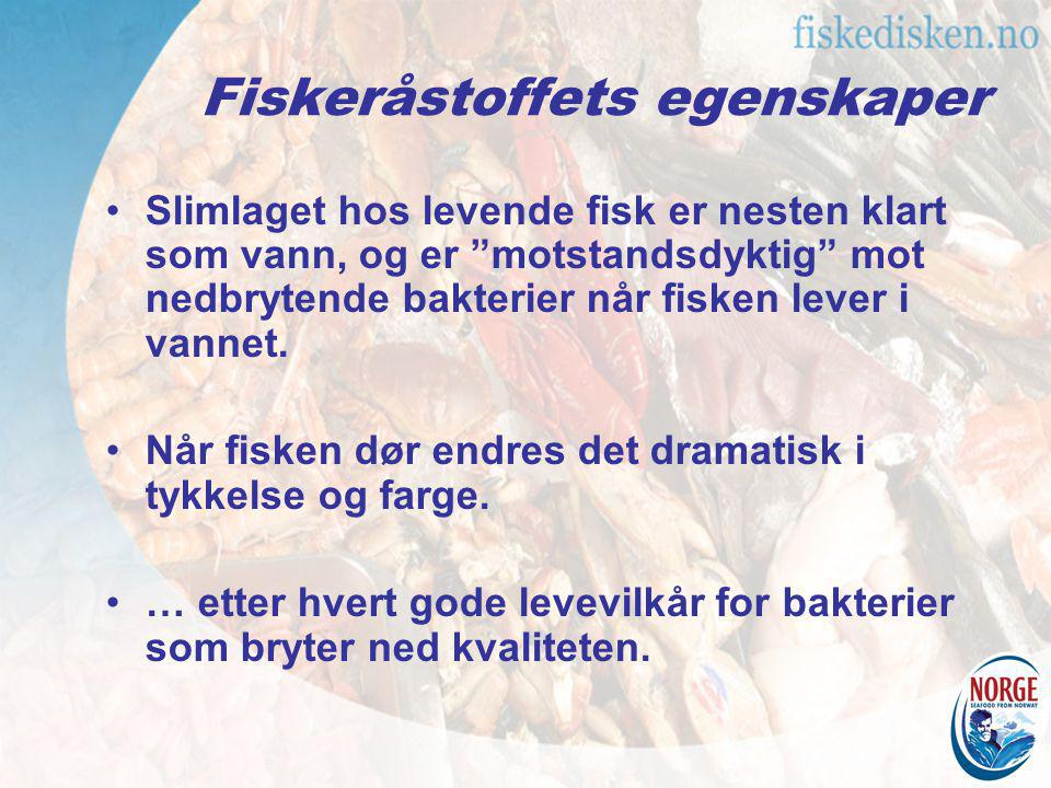Fiskeråstoffets egenskaper Fiskens muskulatur består av to langsgående fileter på hver side av ryggsøylen Fiskefiletens farge avhenger av fiskens art: –torskefisker er lyse i fargen –sild og makrell er mørke i fargen –laksefisker er røde i fargen