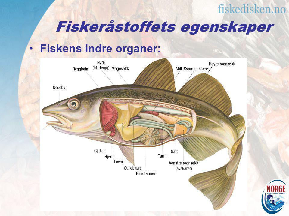 Fiskeråstoffets egenskaper Fiskens indre organer: