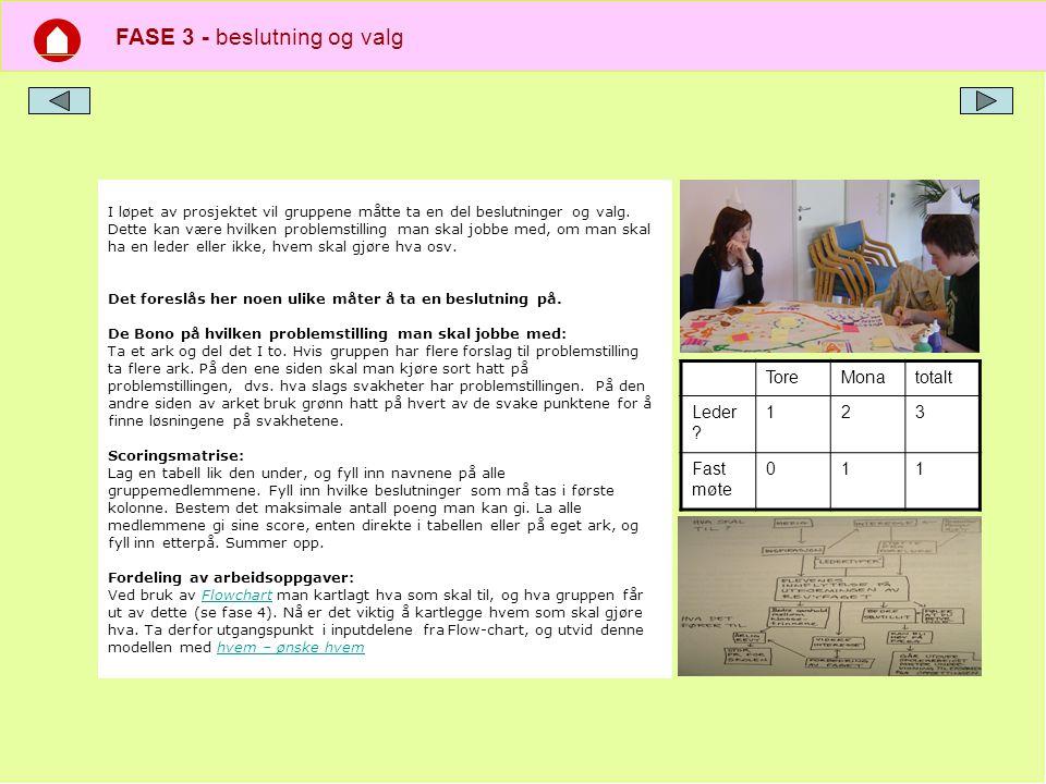 FASE 4 - planlegge prosjektet, hvordan jobbe sammen.
