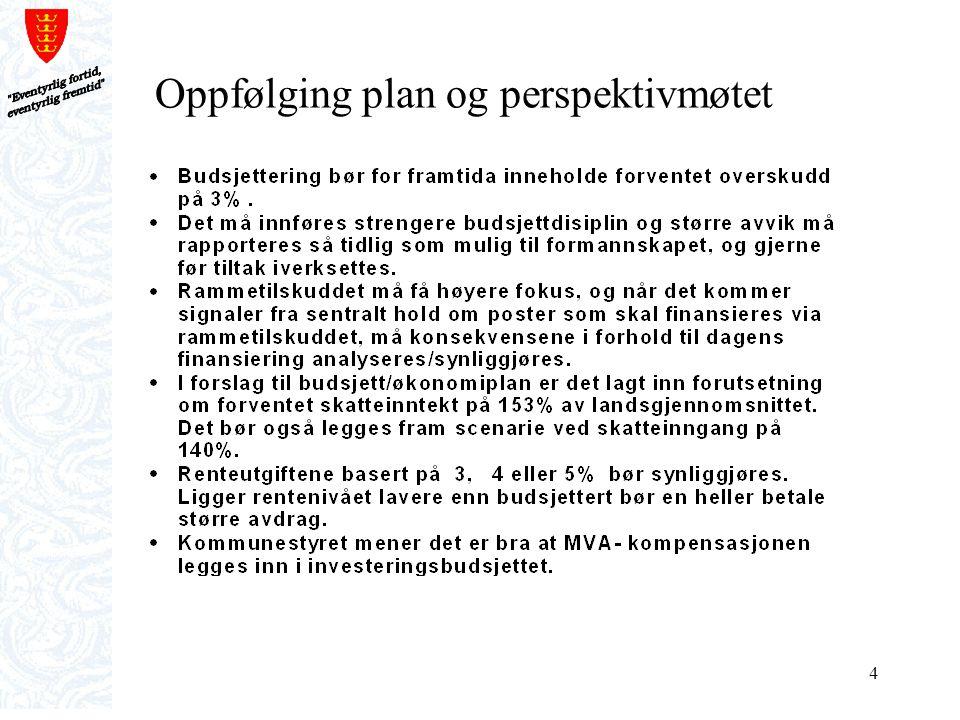 5 Plan og perspektivmøtet forts