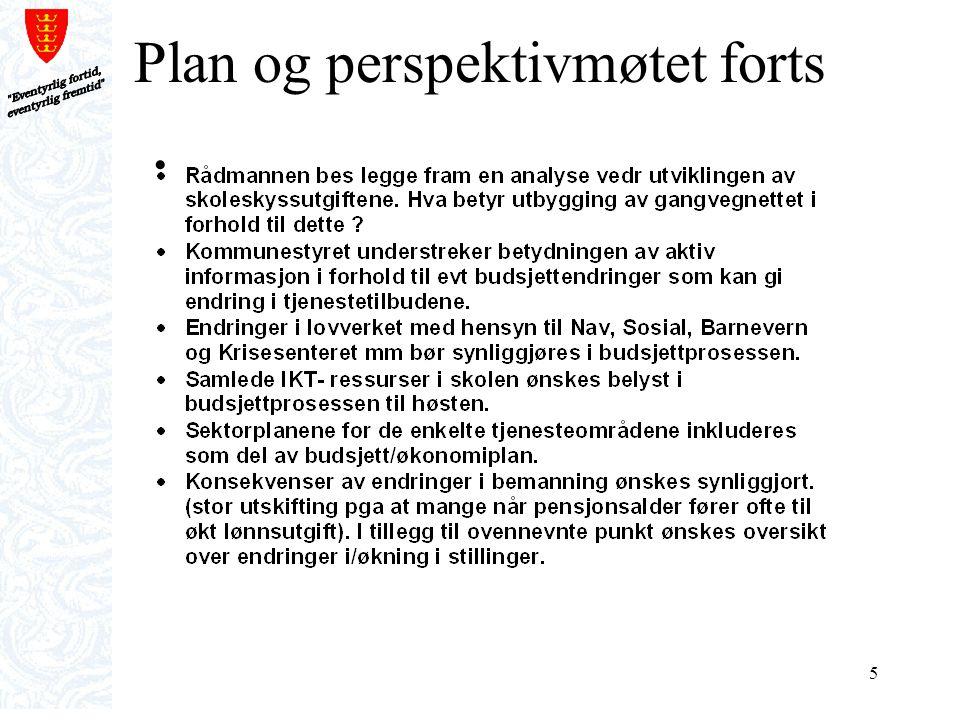 6 Plan og perspektivmøtet forts