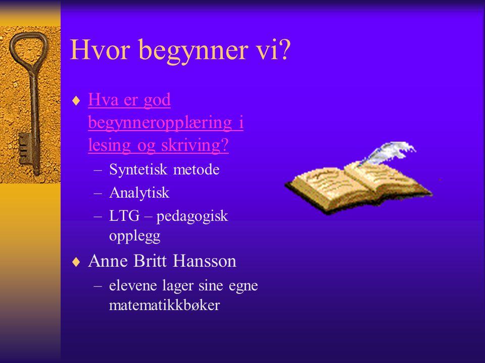 Tekstskaping på datamaskin  Arne Trageton  13/14 klasser i Norge, Danmark, Finland og Estland blir fulgt over 3 år.