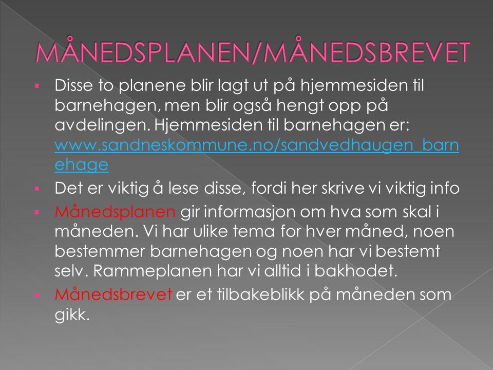  Disse to planene blir lagt ut på hjemmesiden til barnehagen, men blir også hengt opp på avdelingen.