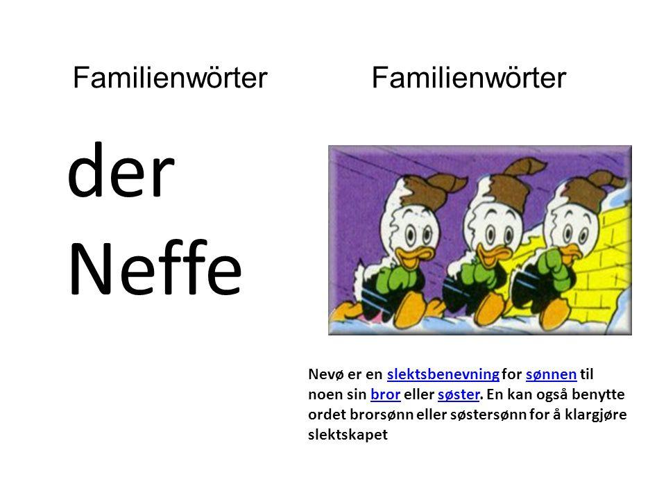 der Neffe Nevø er en slektsbenevning for sønnen til noen sin bror eller søster.