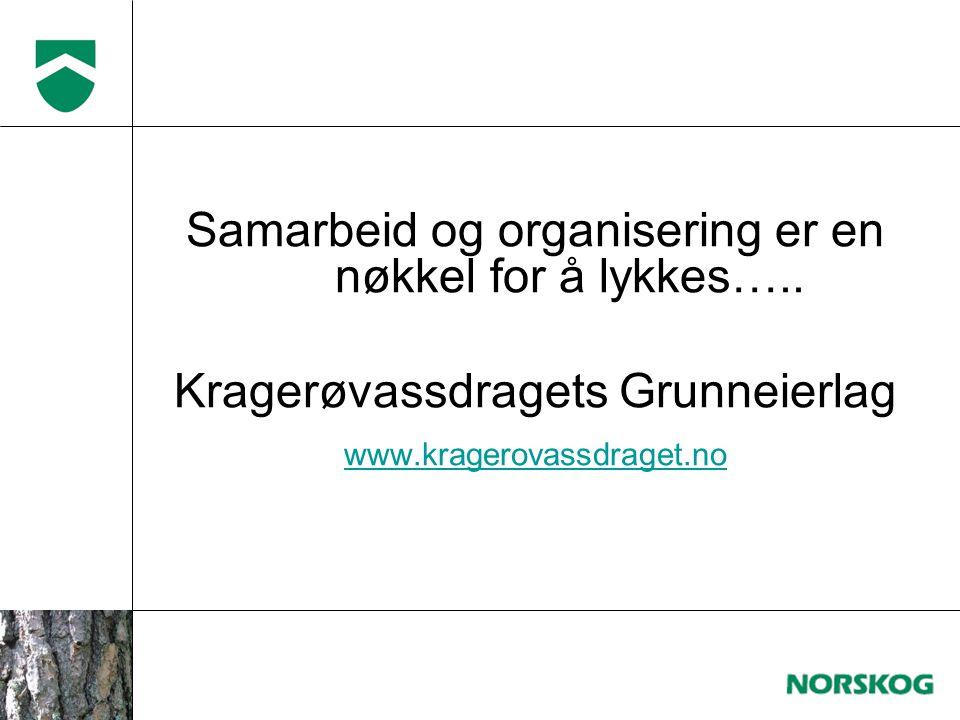 Samarbeid og organisering er en nøkkel for å lykkes…..