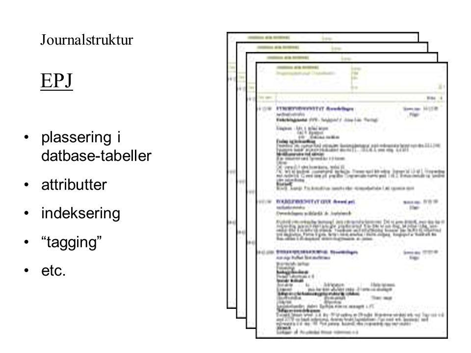 """Journalstruktur EPJ plassering i datbase-tabeller attributter indeksering """"tagging"""" etc."""