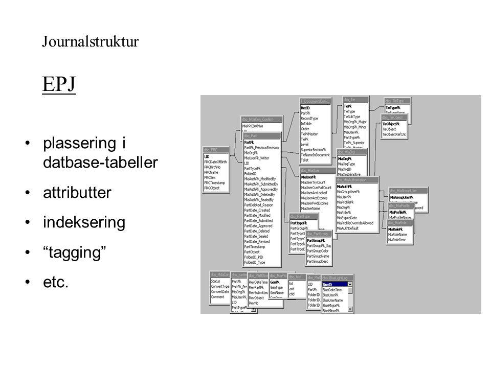 """plassering i datbase-tabeller attributter indeksering """"tagging"""" etc. Journalstruktur EPJ"""