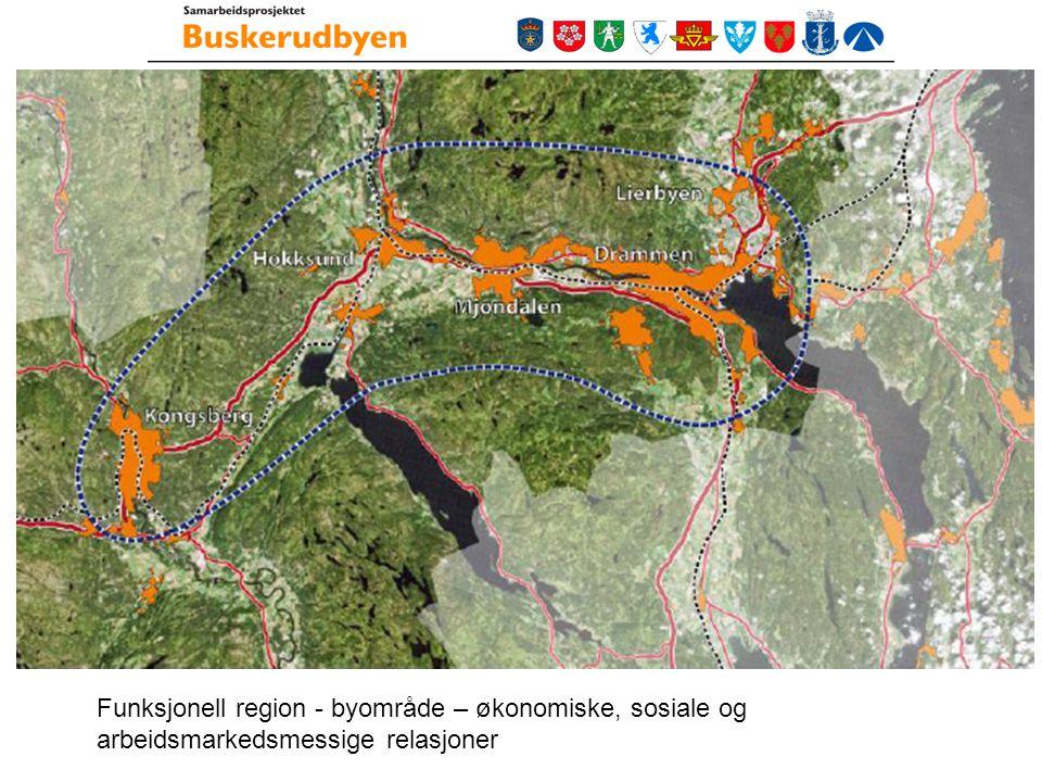 Funksjonell region - byområde – økonomiske, sosiale og arbeidsmarkedsmessige relasjoner