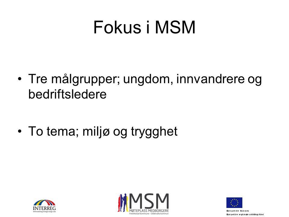Fokus i MSM Tre målgrupper; ungdom, innvandrere og bedriftsledere To tema; miljø og trygghet