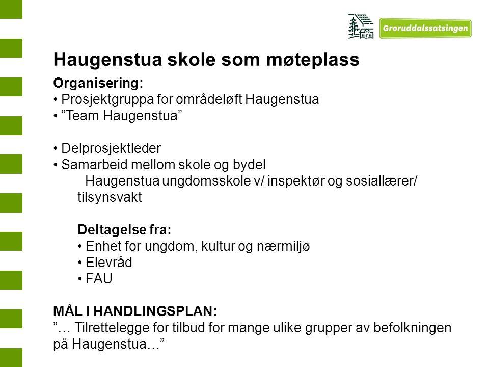 """Organisering: Prosjektgruppa for områdeløft Haugenstua """"Team Haugenstua"""" Delprosjektleder Samarbeid mellom skole og bydel Haugenstua ungdomsskole v/ i"""