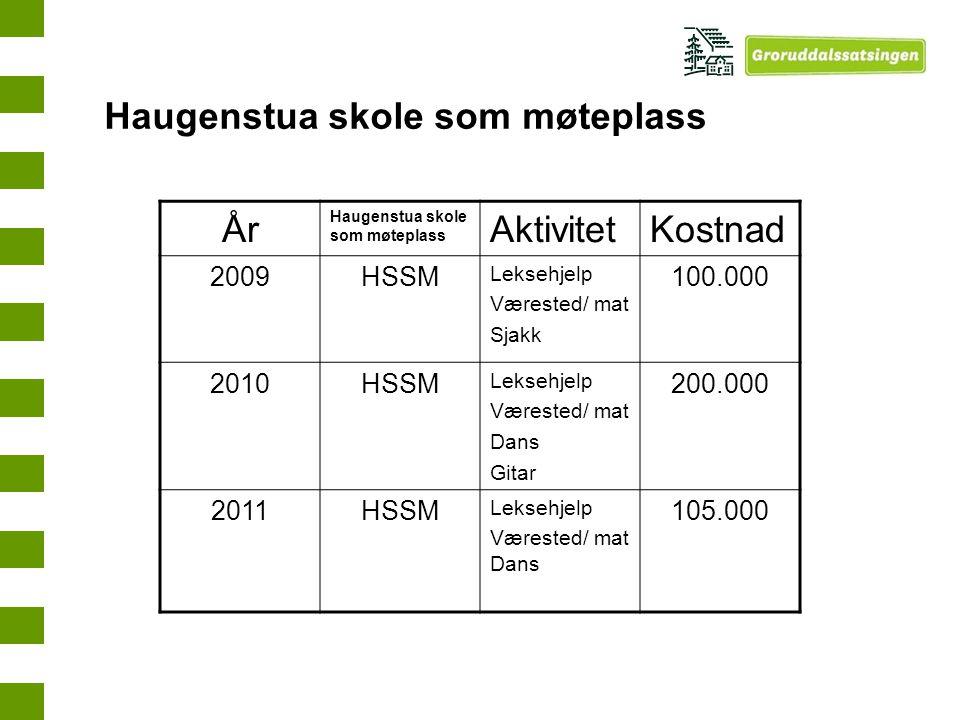 År Haugenstua skole som møteplass AktivitetKostnad 2009HSSM Leksehjelp Værested/ mat Sjakk 100.000 2010HSSM Leksehjelp Værested/ mat Dans Gitar 200.00