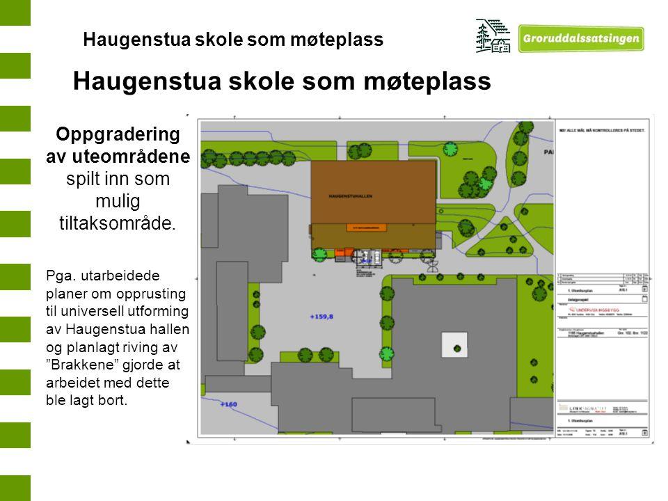 Oppgradering av uteområdene spilt inn som mulig tiltaksområde. Pga. utarbeidede planer om opprusting til universell utforming av Haugenstua hallen og