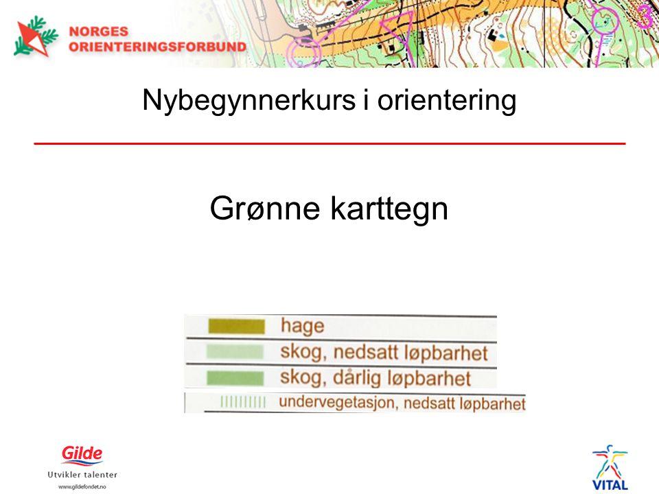 Grønne karttegn Nybegynnerkurs i orientering