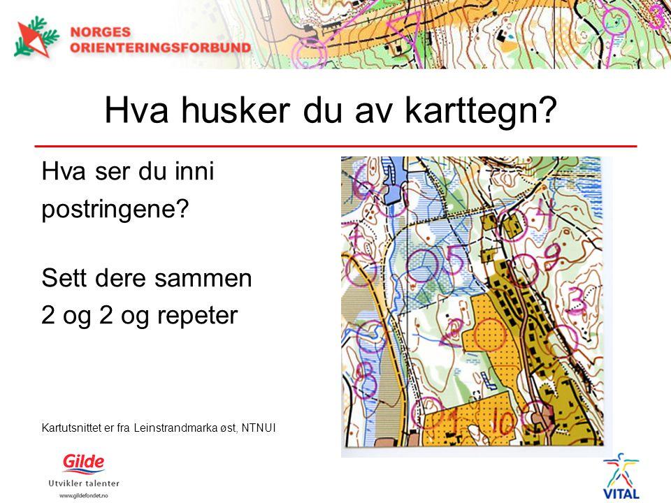Hva husker du av karttegn? Hva ser du inni postringene? Sett dere sammen 2 og 2 og repeter Kartutsnittet er fra Leinstrandmarka øst, NTNUI