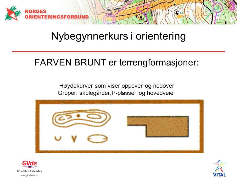 FARVEN BRUNT er terrengformasjoner: Høydekurver som viser oppover og nedover Groper, skolegårder,P-plasser og hovedveier Nybegynnerkurs i orientering