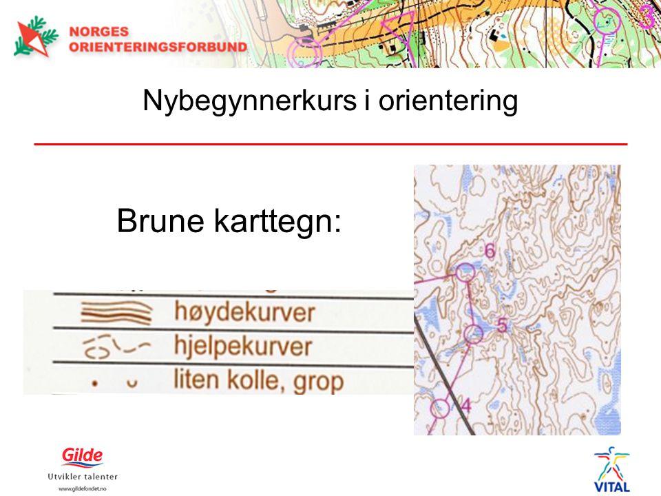 Øvelse 3: Tren på å forstå høydekurver Følg den rød linjen fra 1.