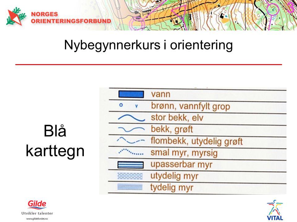 Blå karttegn Nybegynnerkurs i orientering