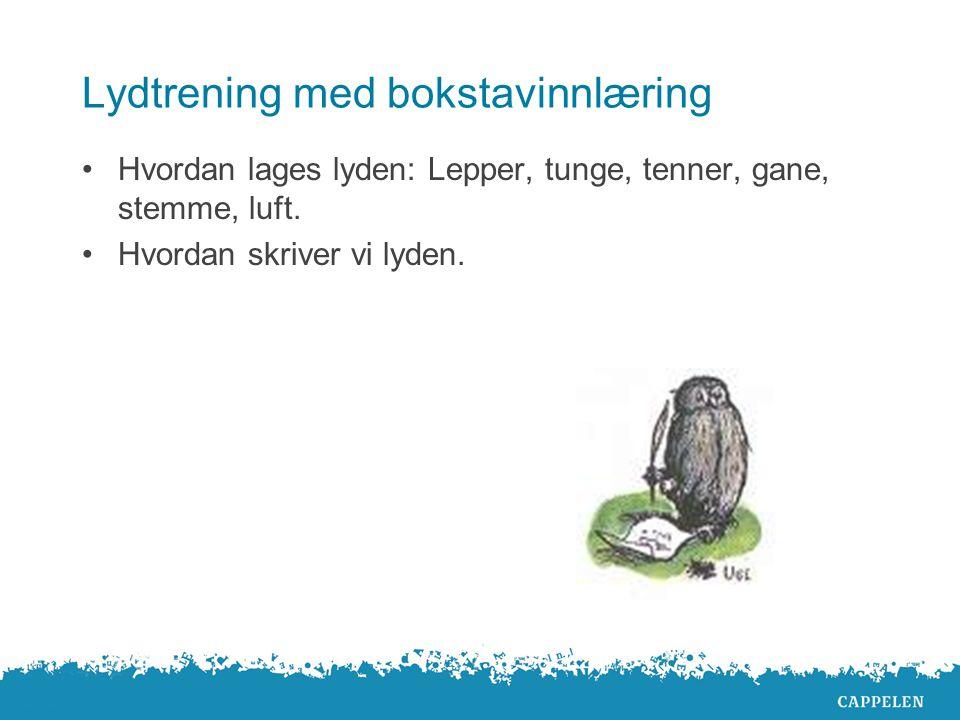 Hovedområder Språkstimulering Skriftspråklig bevissthetstrening Situasjonsuavhengig språk Lydtrening med bokstavinnlæring og lesing. Skriving