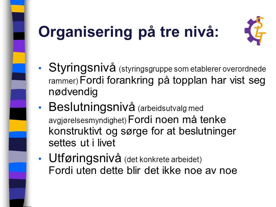 Organisering på tre nivå: Styringsnivå (styringsgruppe som etablerer overordnede rammer) Fordi forankring på topplan har vist seg nødvendig Beslutning