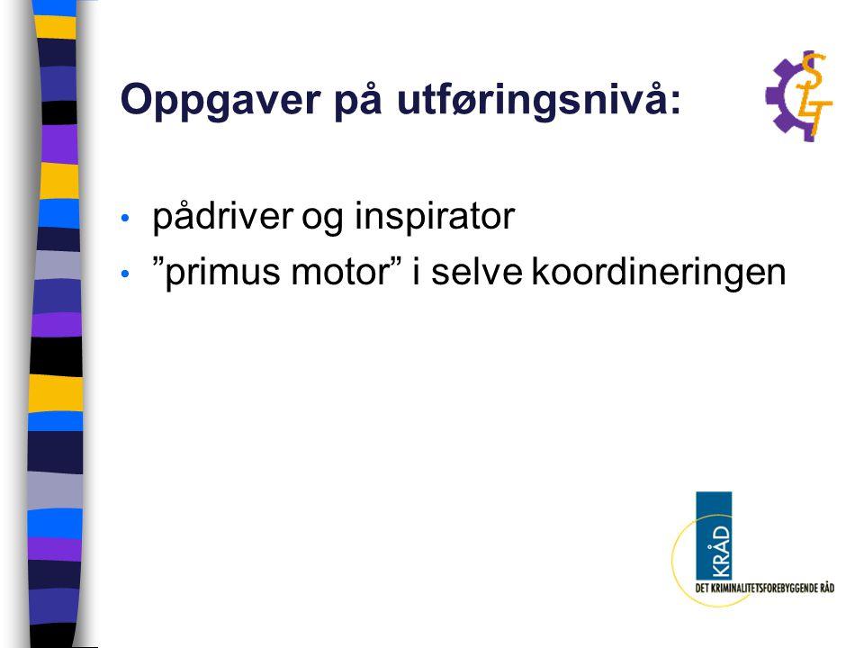 """Oppgaver på utføringsnivå: pådriver og inspirator """"primus motor"""" i selve koordineringen"""