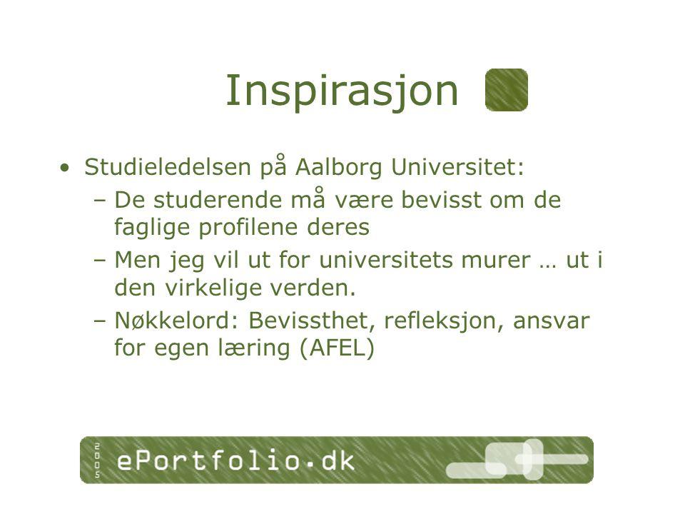 Inspirasjon Studieledelsen på Aalborg Universitet: –De studerende må være bevisst om de faglige profilene deres –Men jeg vil ut for universitets murer … ut i den virkelige verden.
