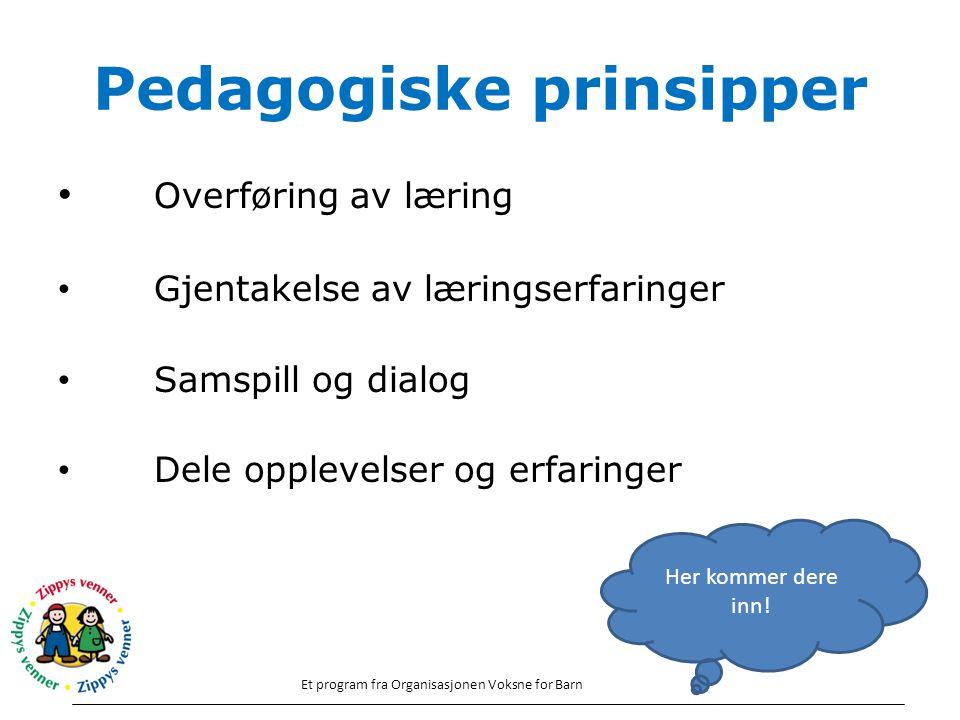 Pedagogiske prinsipper Overføring av læring Gjentakelse av læringserfaringer Samspill og dialog Dele opplevelser og erfaringer Et program fra Organisa