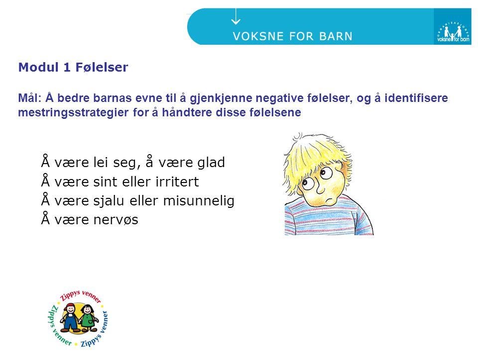 Å være lei seg, å være glad Å være sint eller irritert Å være sjalu eller misunnelig Å være nervøs Modul 1 Følelser Mål: Å bedre barnas evne til å gje