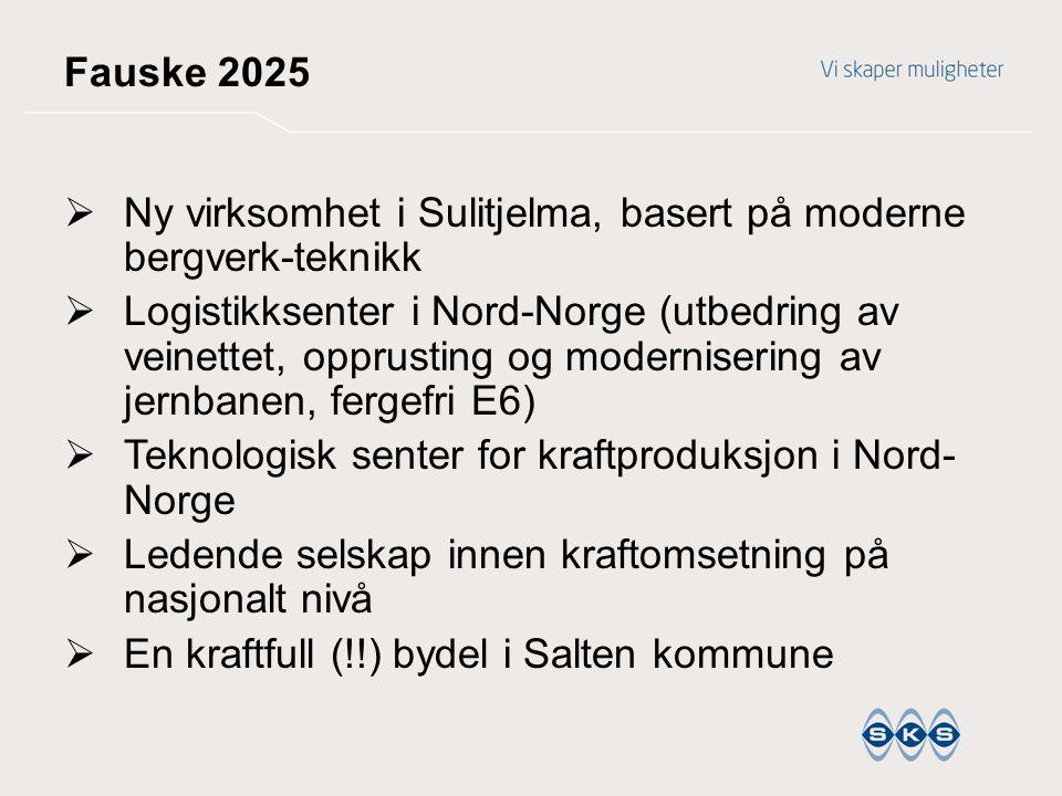 Fauske 2025  Ny virksomhet i Sulitjelma, basert på moderne bergverk-teknikk  Logistikksenter i Nord-Norge (utbedring av veinettet, opprusting og mod