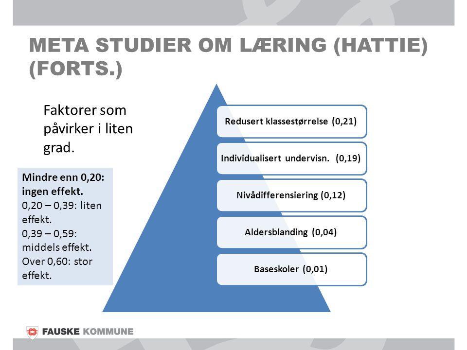META STUDIER OM LÆRING (HATTIE) (FORTS.) Redusert klassestørrelse (0,21)Individualisert undervisn. (0,19)Nivådifferensiering (0,12)Aldersblanding (0,0