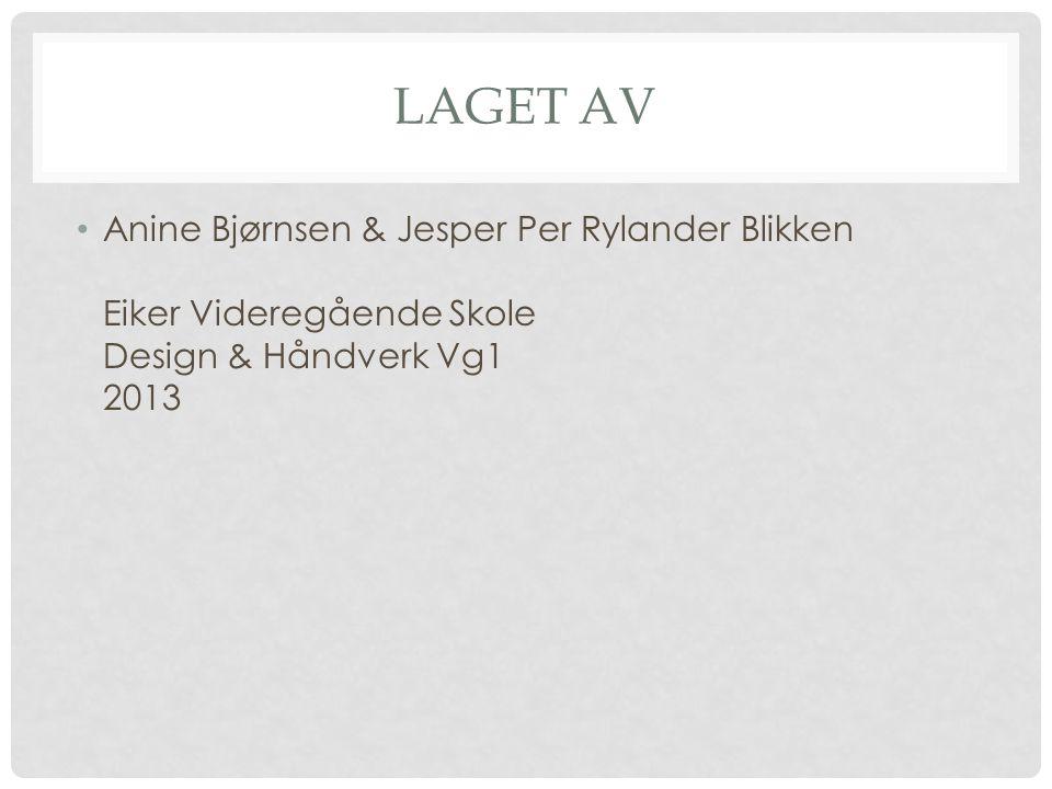 LAGET AV Anine Bjørnsen & Jesper Per Rylander Blikken Eiker Videregående Skole Design & Håndverk Vg1 2013