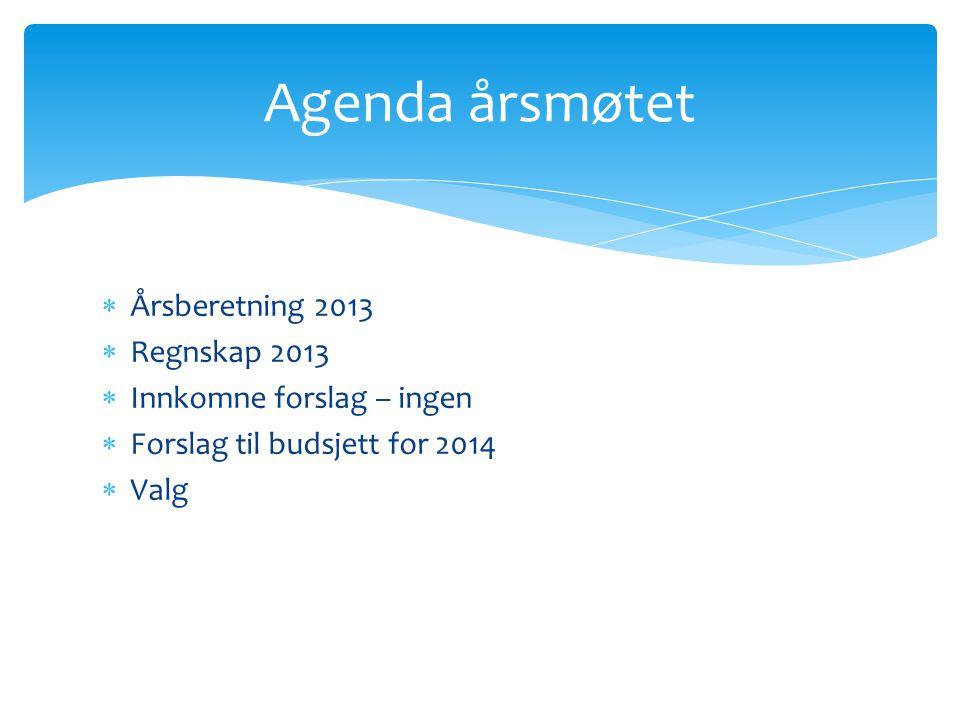  Årsberetning 2013  Regnskap 2013  Innkomne forslag – ingen  Forslag til budsjett for 2014  Valg Agenda årsmøtet