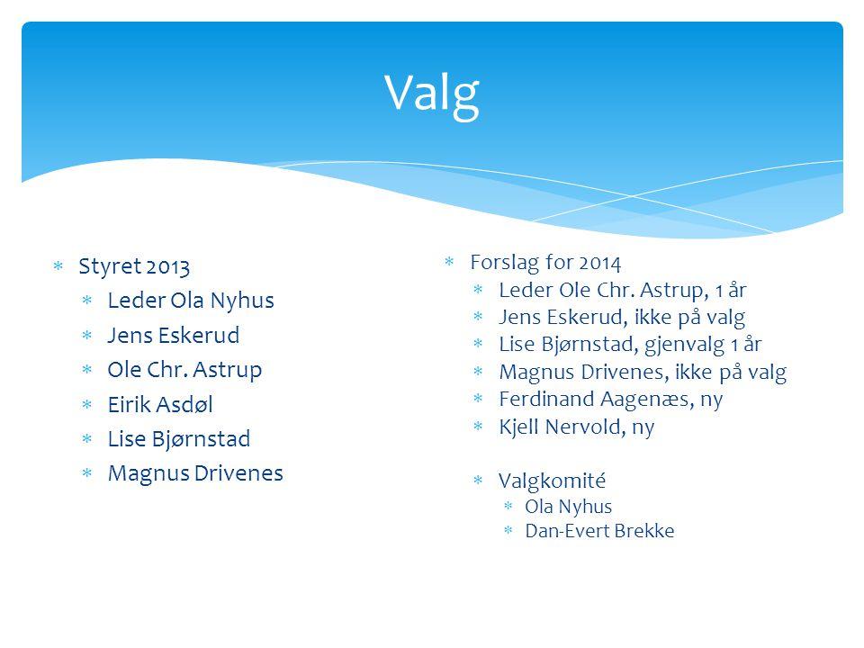 Valg  Forslag for 2014  Leder Ole Chr.