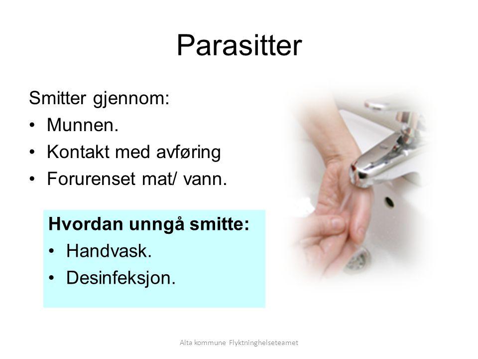 Alta kommune Flyktninghelseteamet Parasitter Smitter gjennom: Munnen.