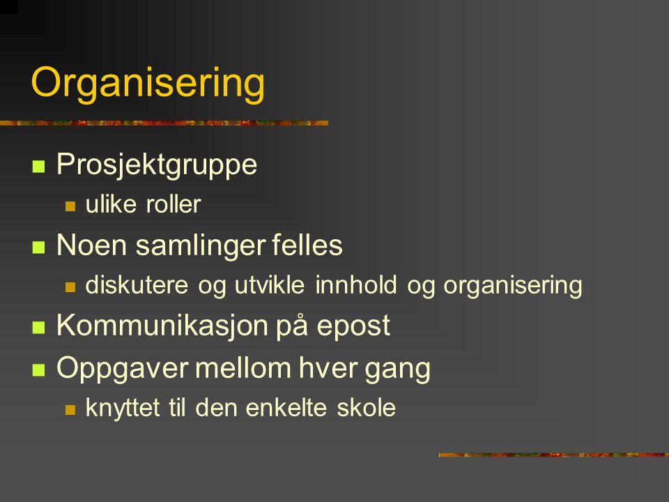 Organisering Prosjektgruppe ulike roller Noen samlinger felles diskutere og utvikle innhold og organisering Kommunikasjon på epost Oppgaver mellom hve