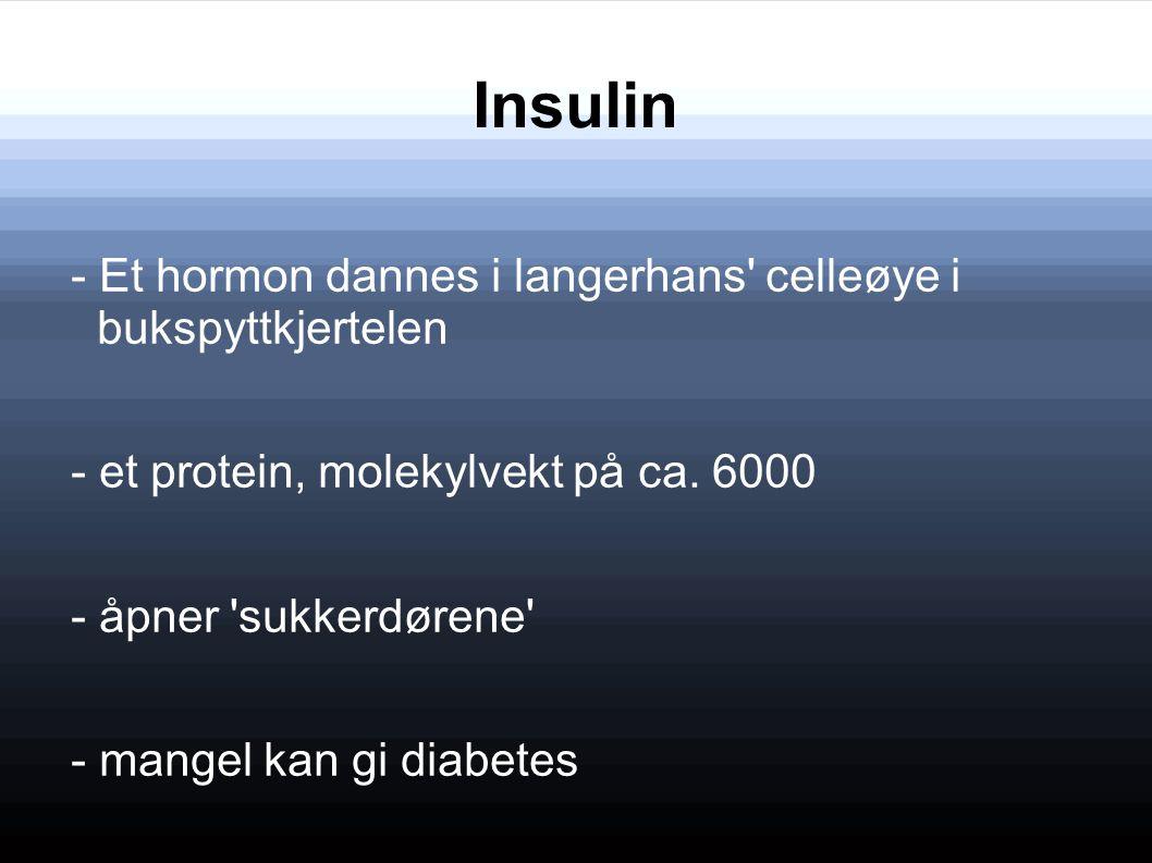 Insulin - Et hormon dannes i langerhans' celleøye i bukspyttkjertelen - et protein, molekylvekt på ca. 6000 - åpner 'sukkerdørene' - mangel kan gi dia