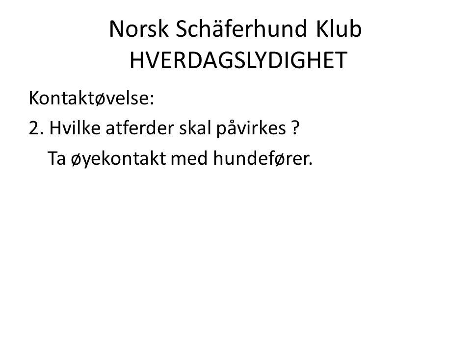 Norsk Schäferhund Klub HVERDAGSLYDIGHET Kontaktøvelse: 2.