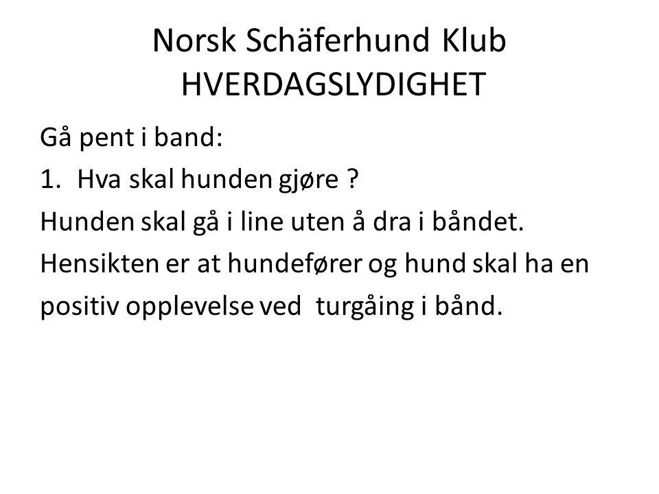 Norsk Schäferhund Klub HVERDAGSLYDIGHET Gå pent i band: 1.Hva skal hunden gjøre .
