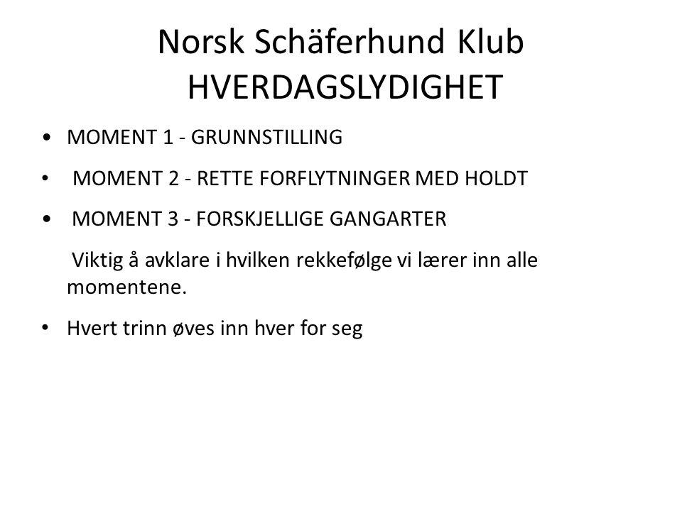 Norsk Schäferhund Klub HVERDAGSLYDIGHET MOMENT 1 - GRUNNSTILLING MOMENT 2 - RETTE FORFLYTNINGER MED HOLDT MOMENT 3 - FORSKJELLIGE GANGARTER Viktig å avklare i hvilken rekkefølge vi lærer inn alle momentene.