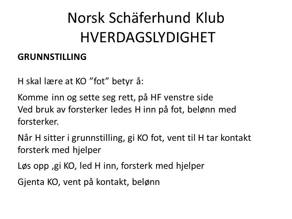Norsk Schäferhund Klub HVERDAGSLYDIGHET GRUNNSTILLING H skal lære at KO fot betyr å: Komme inn og sette seg rett, på HF venstre side Ved bruk av forsterker ledes H inn på fot, belønn med forsterker.