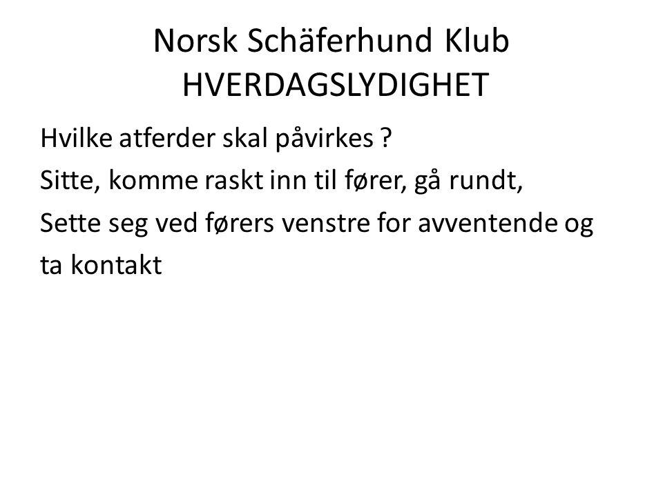 Norsk Schäferhund Klub HVERDAGSLYDIGHET Hvilke atferder skal påvirkes .