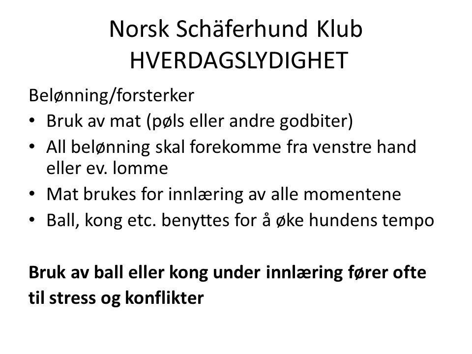 Norsk Schäferhund Klub HVERDAGSLYDIGHET Belønning/forsterker Bruk av mat (pøls eller andre godbiter) All belønning skal forekomme fra venstre hand eller ev.