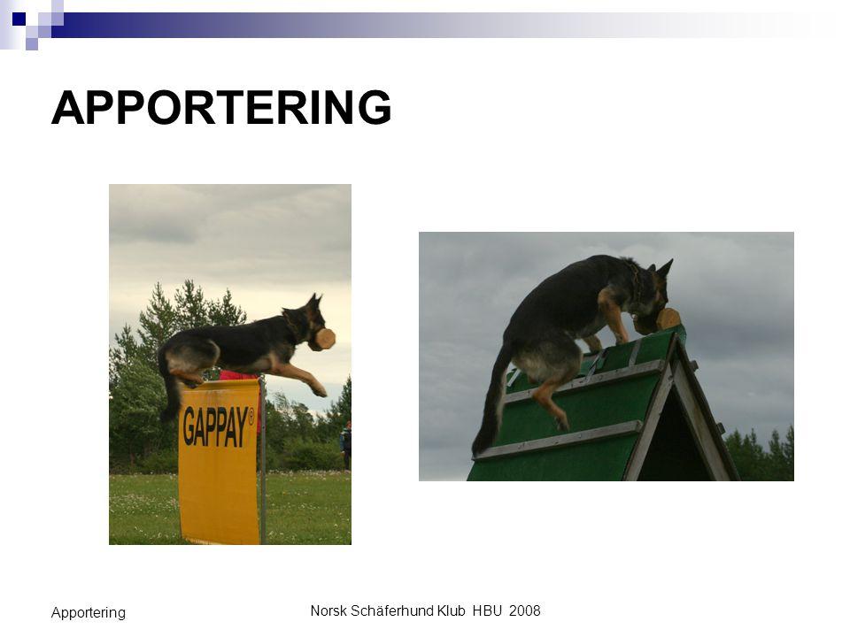 Norsk Schäferhund Klub HBU 2008 Apportering INNLEDNING Innlæringsmetodene i denne leksjonen bygger på kunnskaper om hundens (H) atferd.
