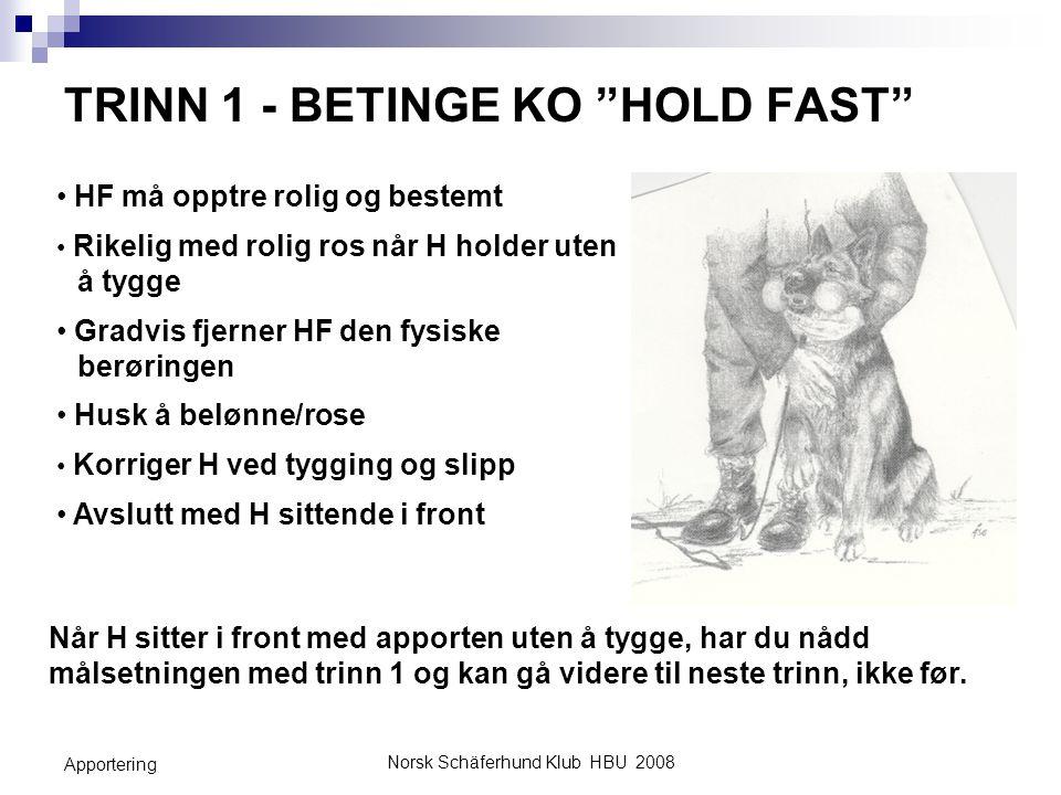 """Norsk Schäferhund Klub HBU 2008 Apportering TRINN 1 - BETINGE KO """"HOLD FAST"""" HF må opptre rolig og bestemt Rikelig med rolig ros når H holder uten å t"""