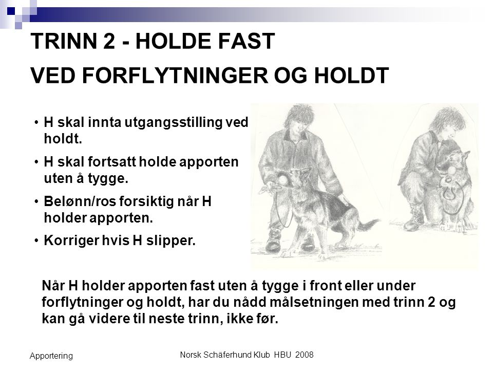Norsk Schäferhund Klub HBU 2008 Apportering TRINN 2 - HOLDE FAST VED FORFLYTNINGER OG HOLDT Når H holder apporten fast uten å tygge i front eller unde
